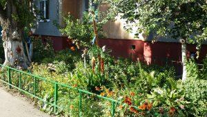 Курск: Лучший двор города Курска