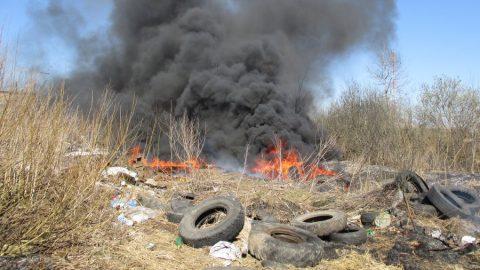 Региональный центр «ЖКХ Контроль» борется с проблемой сжигания отходов в Хабаровском крае